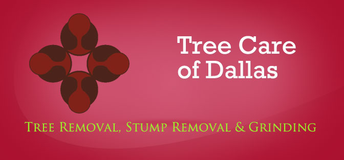 Tree Care of Dallas